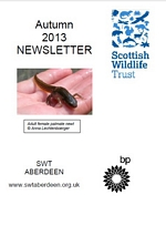 Link to the Autumn 2013 Newsletter